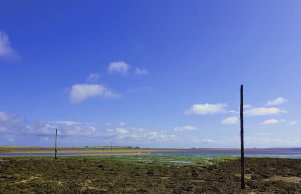 Pilgrim's Way poles at the start of the route to Holy Island / Lindisfarne